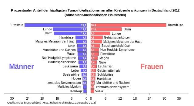 Diagnose Hodenkrebs: Was bedeutet das und wie gefährlich ist der Krebs? 2