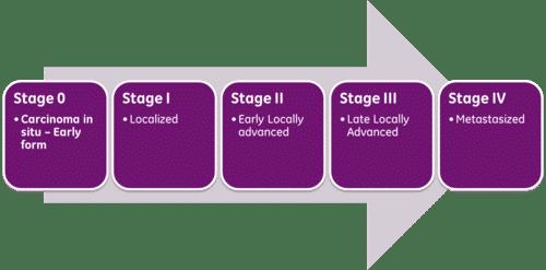 Das Staging bei Hodenkrebs und Arztbefunde verstehen 1